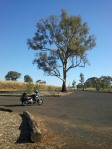 The Southern Cloud memorial near Tumbarumba.